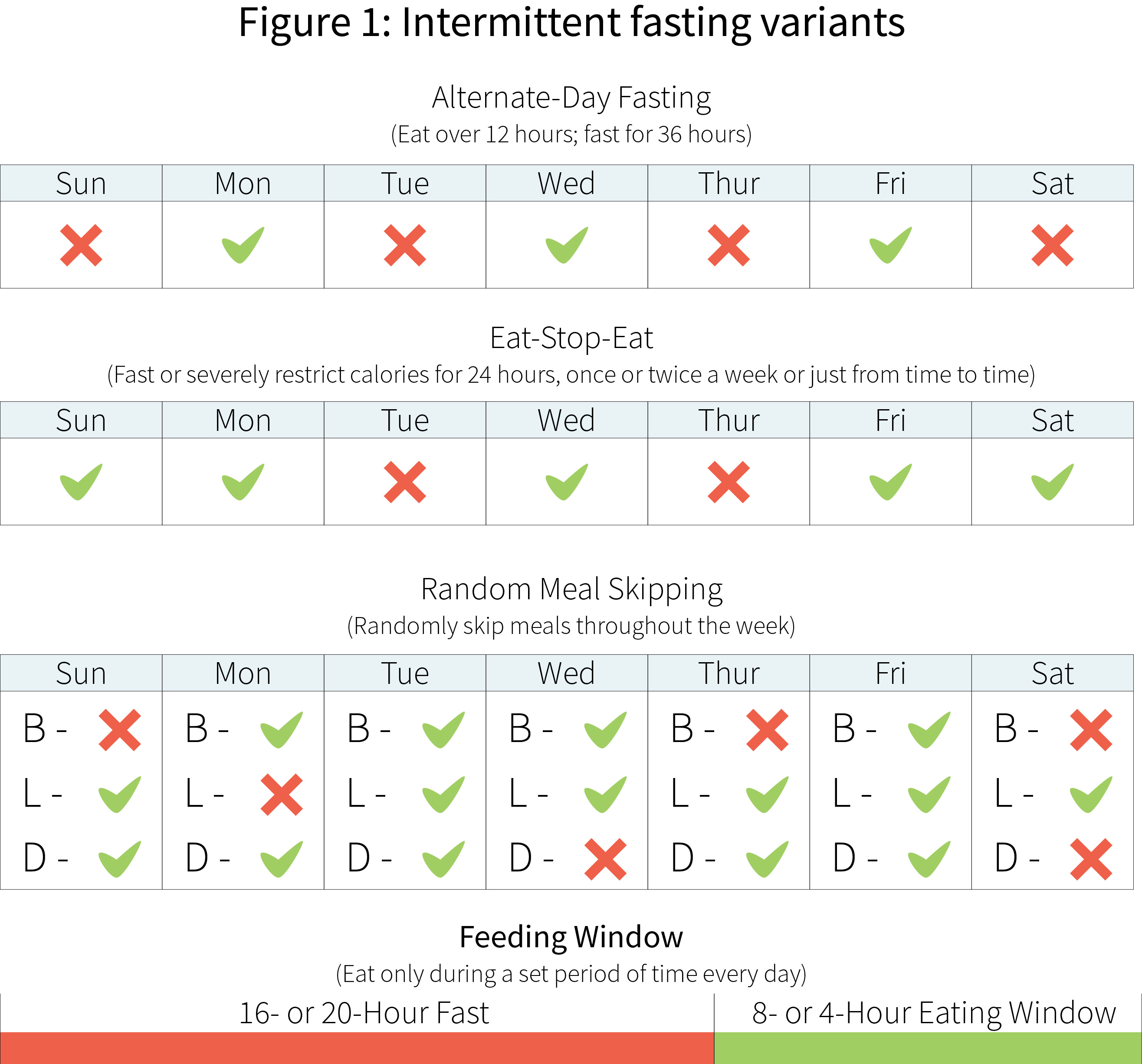 The low-down on intermittent fasting | Examine com