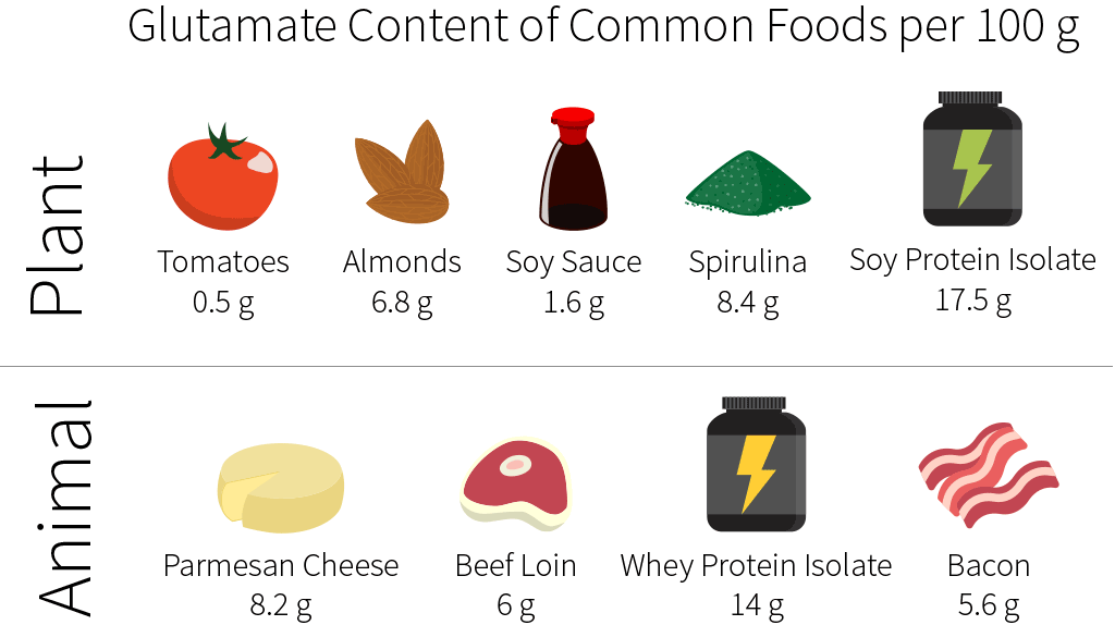 MSG - glutamate content of common foods (animals and plants)