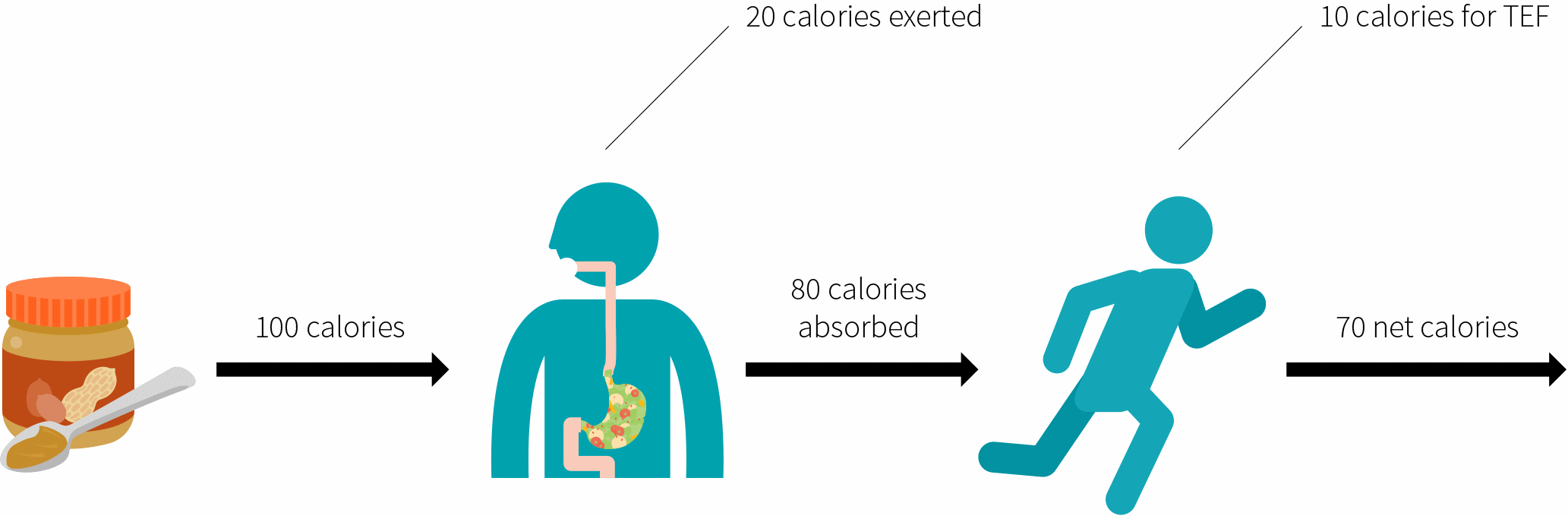 Consumption of calories after you ingest food