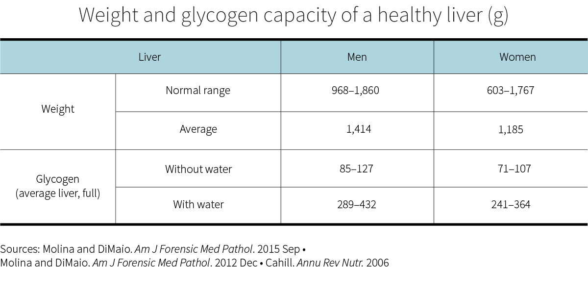 Weight and glycogen capacity of a healthy liver (g)