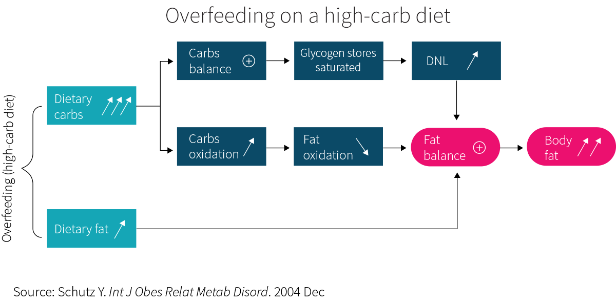 Overfeeding on a high-carb diet