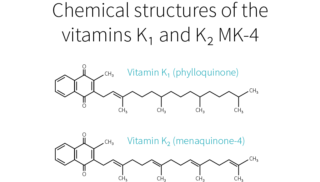 Vitamin K1 and K2 MK-4 structure