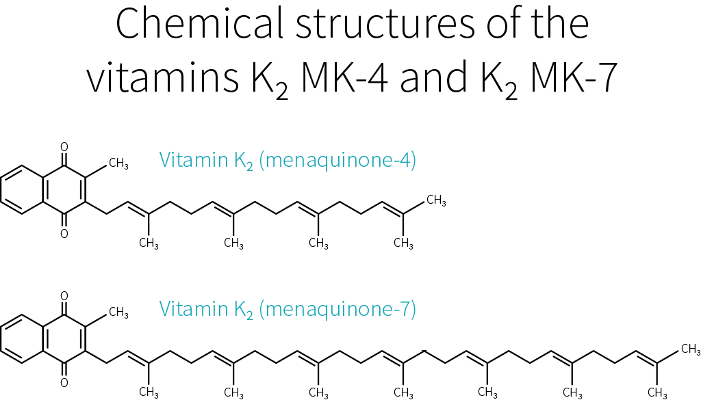 Vitamin K2 MK-4 and MK-7 structure